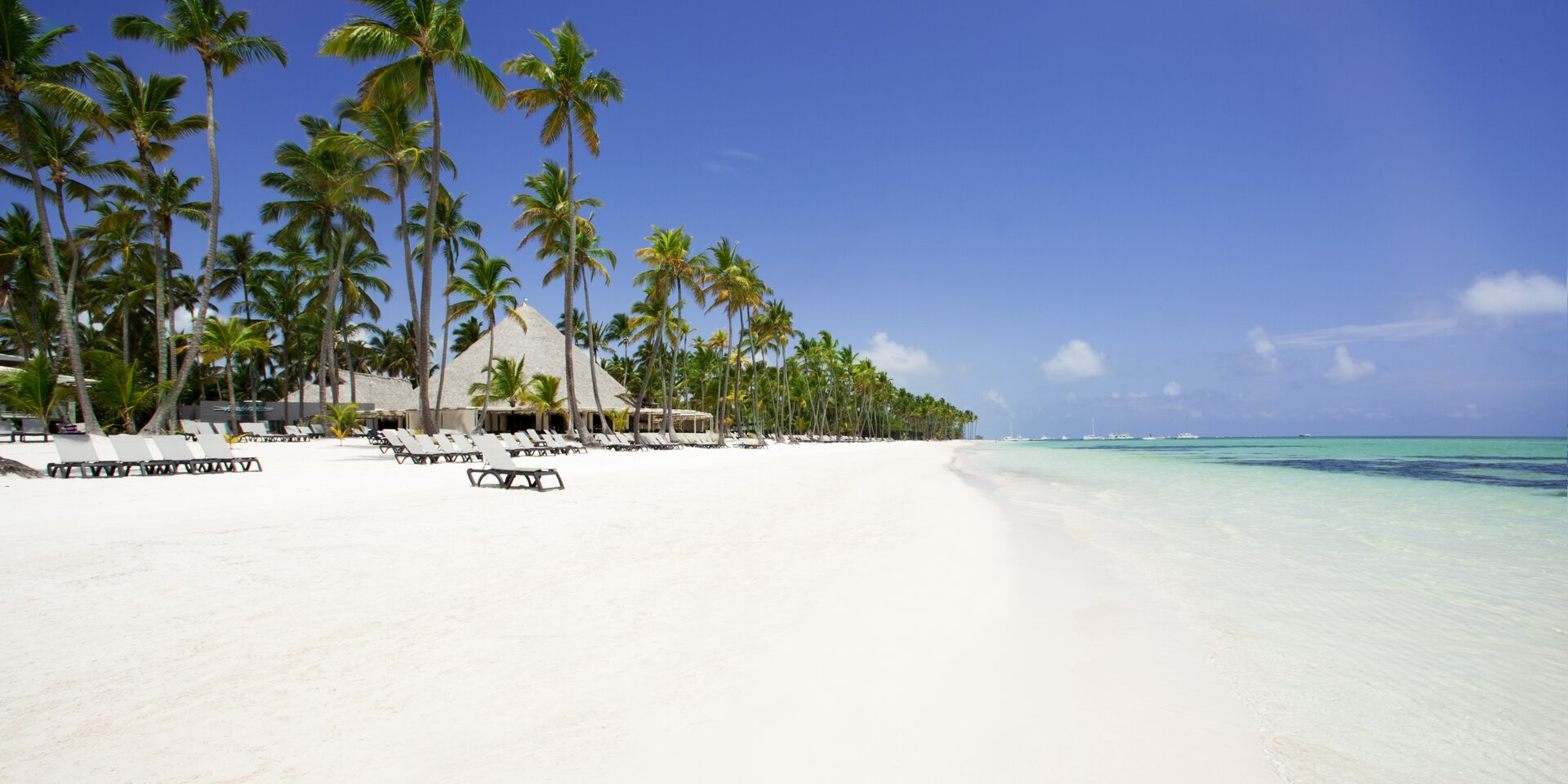 Barcelo Bavaro Beach in Punta Cana